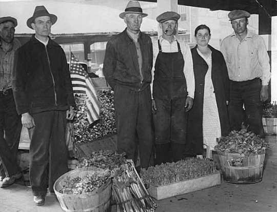 Black and white photograph of farmers who braved the picket lines to reach the Minneapolis city produce market during the truckers' strike, 1934. Photograph by the Minneapolis Tribune.