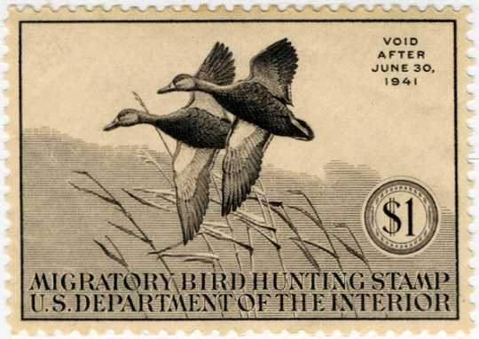 Federal Duck Stamp Design