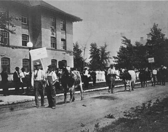 Black and white photograph of a livestock parade at the Northwest Experiment Station's annual visiting day.