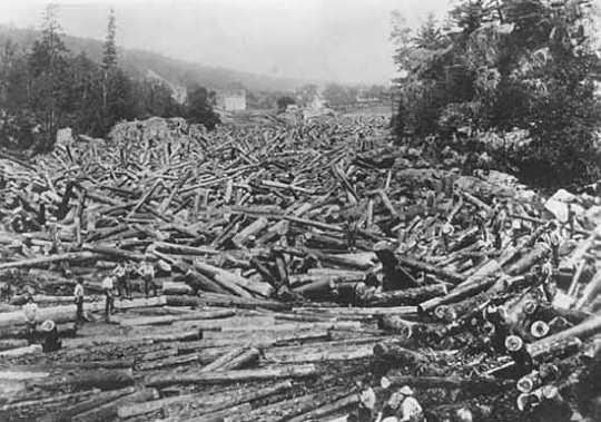 Black and white photograph of a log Jam at Taylors Falls, 1886.