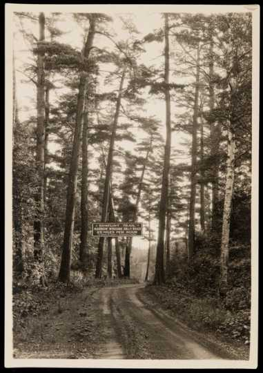 """Road sign warning of """"narrow, winding, hilly road, 25 miles per hour"""" along the Gunflint Trail. Photograph by R. O. Fletcher, ca. 1925."""