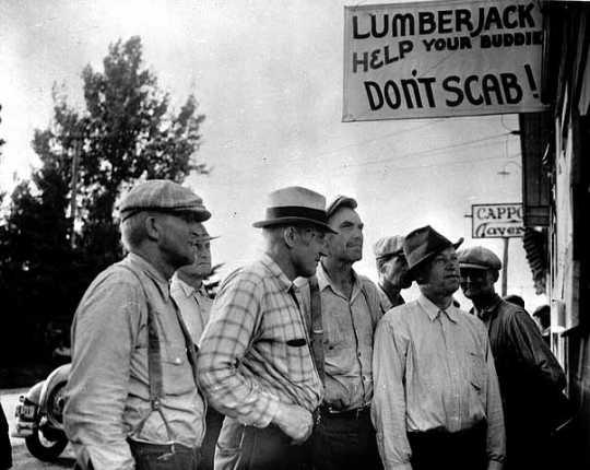 Michigan strikers reading bulletin board at strike headquarters, Marenisco, Michigan.