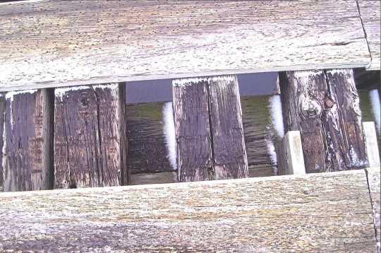 Minnesota and International Railway trestle bridge exposed tie and stringers