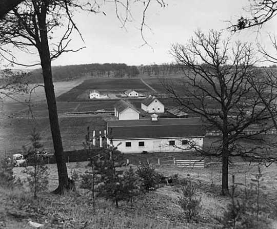 Black and white photograph of farm buildings, Rochester State Hospital, c.1940.