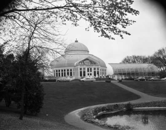Black and white photograph of Como Conservatory exterior, 1964.
