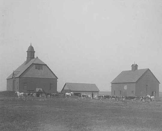 Black and white photograph of farm buildings at the State School, 1905.