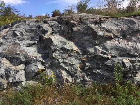 Color image of a gneiss cliffside in Morton, 2016. Photograph by Paul Nelson.