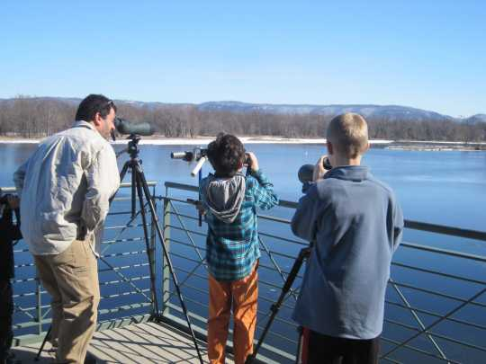 Color image of National Eagle Center visitors watch eagles from the center's observation deck, 2013.