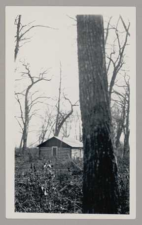 A house on the Red Lake Indian Reservation, 1934