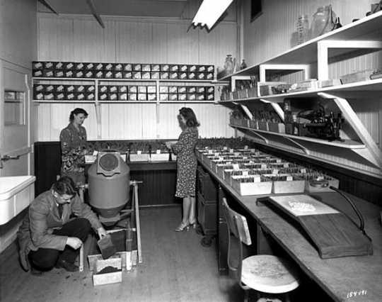 Corn laboratory, Northrup, King and Company, Minneapolis. Photograph by Norton & Peele, January 12, 1945.