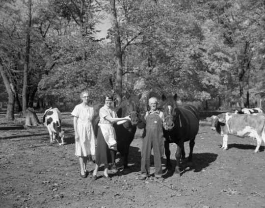 Black and white photograph of owners of a family farm in Maple Plain pose with their animals, October 10, 1955.