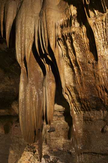"Photograph of ""Granddad Formation"" Niagara Cave"