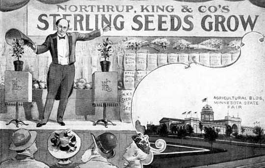 Postcard advertising Northrup, King and Company's Sterling Seeds