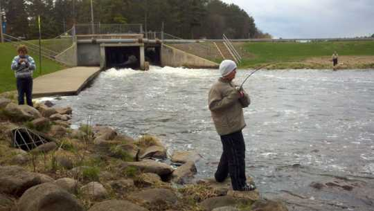 Norway Brook fishing opener