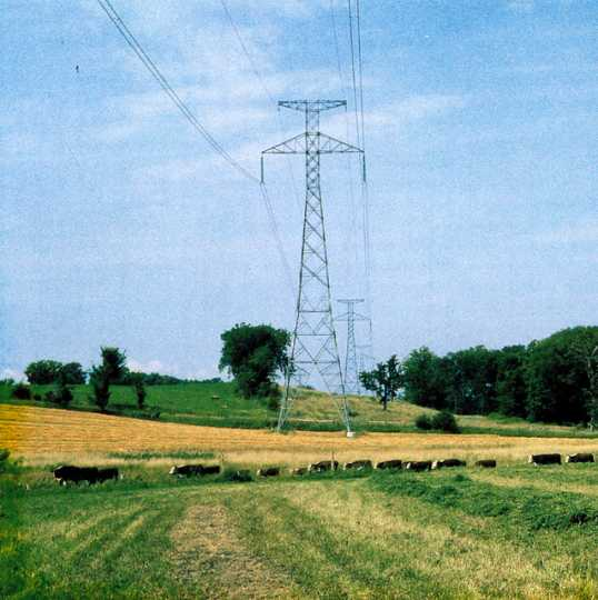 Power line over Minnesota farmland, undated. Minnesota Powerline Oral History Project (OH 25). Oral History Collection, Minnesota Historical Society, St. Paul.