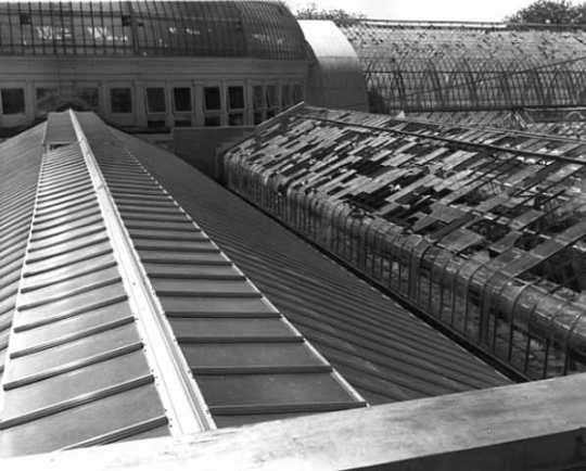 Black and white photograph of hailstorm damage on Conservatory roof, 1962.