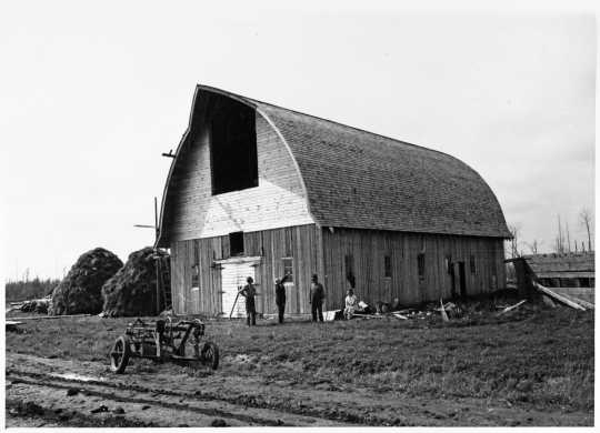 Black and white photograph of a new barn constructed on Beltrami Island Relocation Project, ca. 1937.