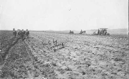 Black and white photograph of a horse and tractor farming in Roseau County, ca. 1920.