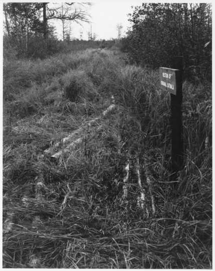 Section of original catwalk, Savanna Portage, ca. 1980. Photograph by Alan Ominsky.