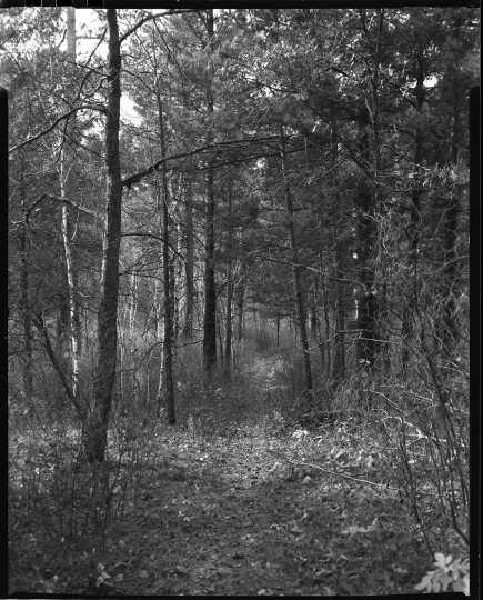 Savanna Portage Trail, 1962. Photograph by Eugene D. Becker.