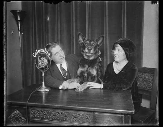 Thomas D. Schall with a German shepherd, possibly Lux, and a woman seated in front of a Columbia microphone