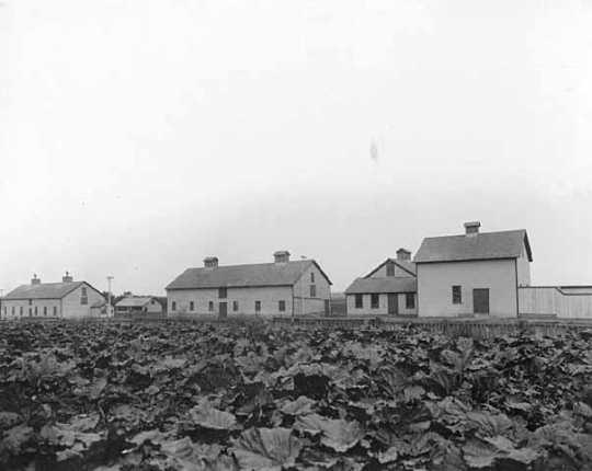 Piggeries and slaughter house, Fergus Falls State Hospital, Fergus Falls.