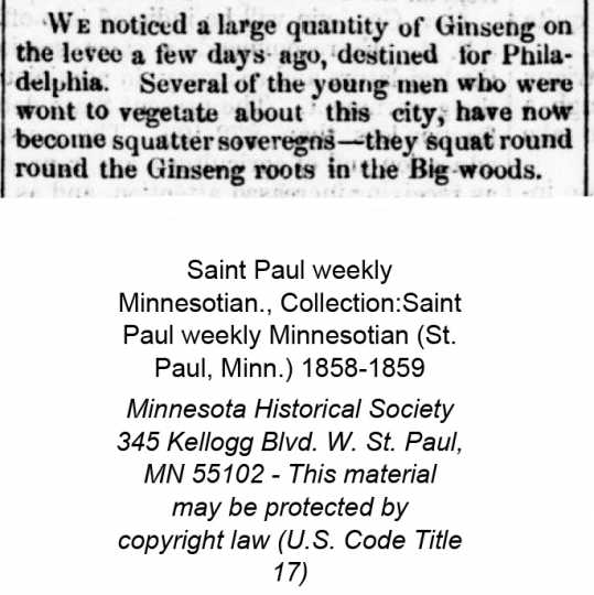 """Clipping from the St. Paul Weekly newspaper, June 11, 1859, that mentions people squatting """"round the Ginseng Roots in the Big Woods"""""""