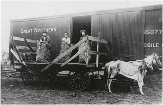 Black and white photograph of Thomas McMahon (far left), a farmer in Tara Township, loading hay onto a Great Northern Railway freight car, c.1910.