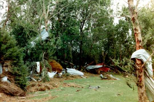 Tin debris caught in tree branches and in vegetation in the aftermath of the Chandler–Lake Wilson Tornado, June 1992.