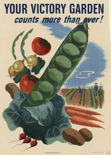 American World War II poster promoting victory gardens. 1944. Artist: Morley Size.