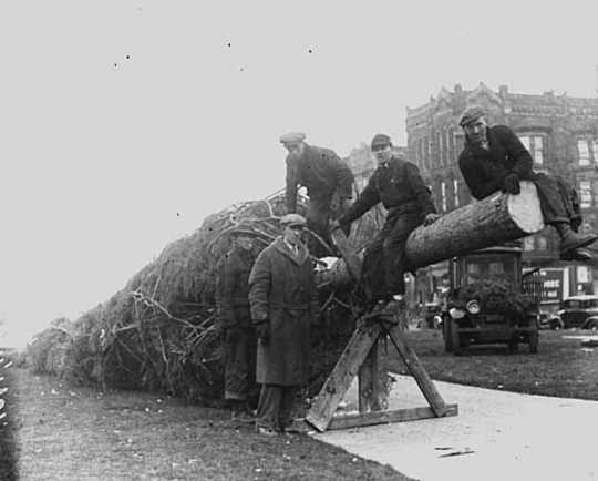 Putting up a Christmas Tree in Gateway Park, 1931