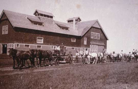 Black and white photograph of teams of horses with equipment and drivers in front of a barn, 1910.