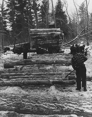 Ojibwe men loading logs on Ponemah Point, Red Lake Indian Reservation