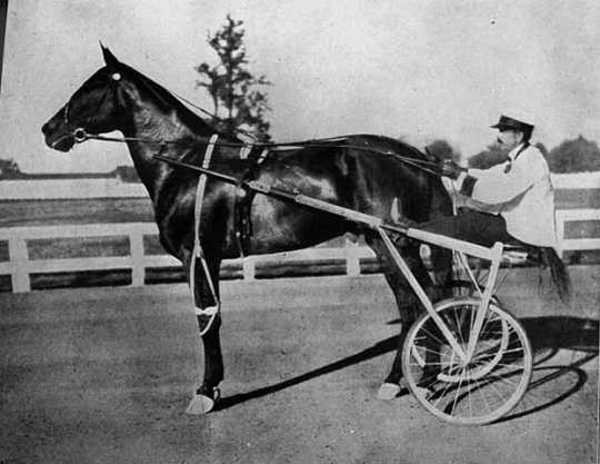 Dan Patch and driver