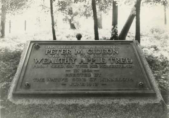 Tablet to Peter M. Gideon