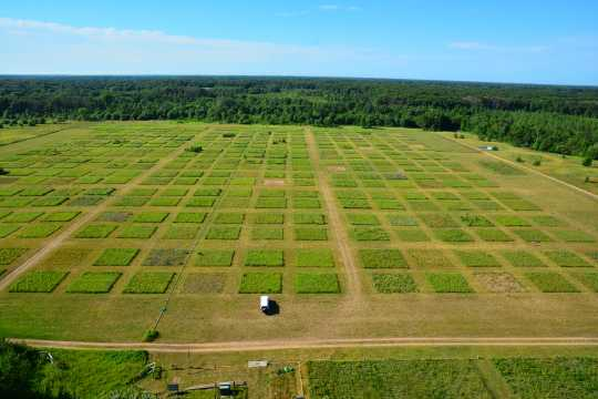 Aerial view of the BigBio project inside Cedar Creek Ecosystem Science Reserve.