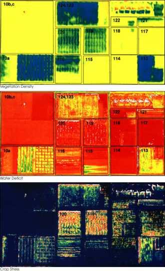 Color image of emotely sensed image of a farm field illustrating vegetation density, water deficit, and crop stress, 2010.